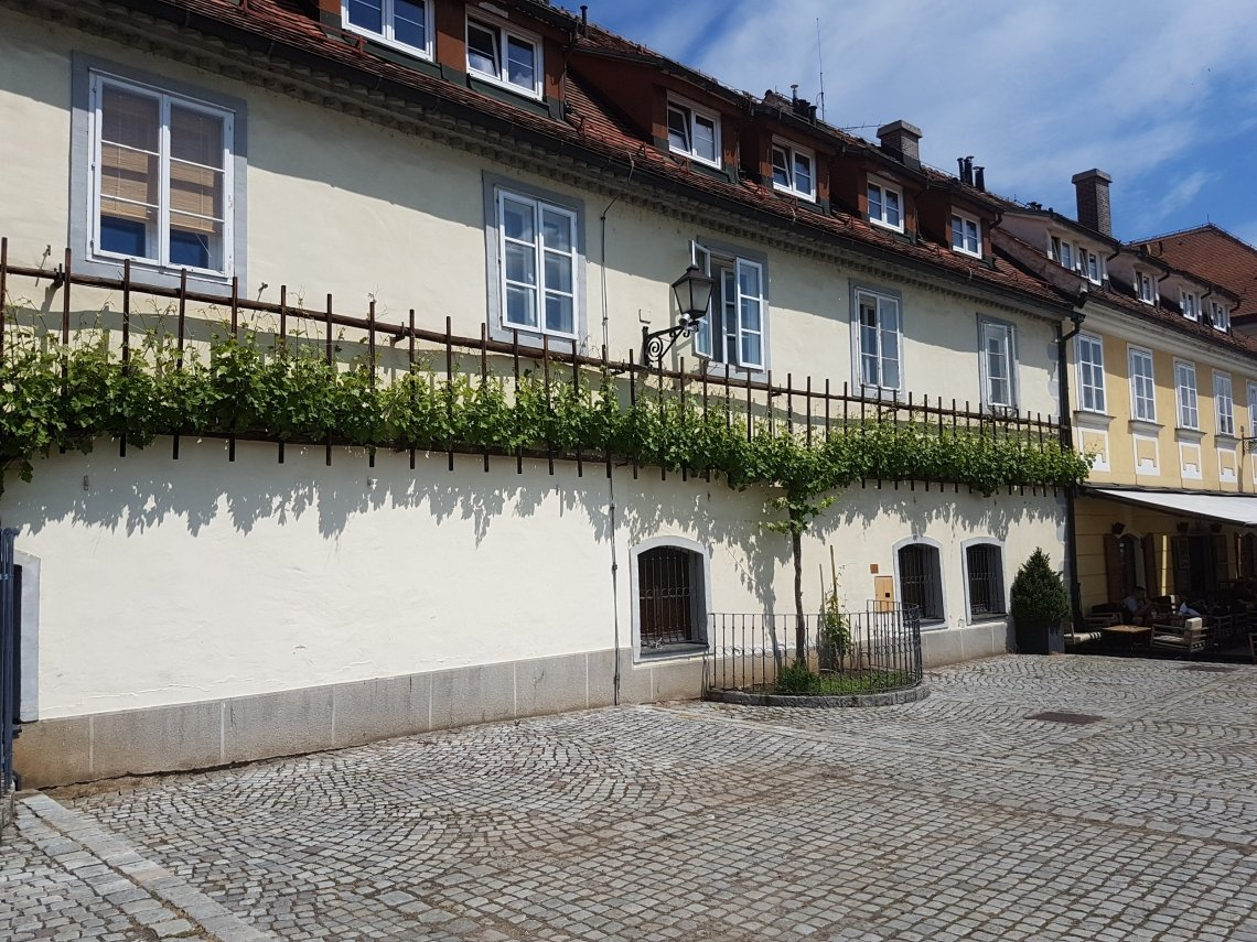 The Old Vine House in Maribor