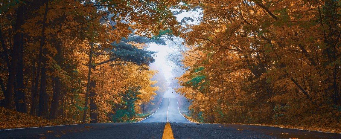 Landstraße in Finnland im Herbst