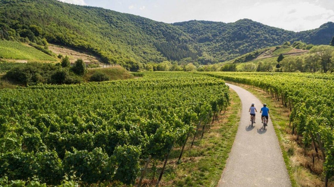 Radfahrer in den Weinbergen bei Mayschoss im Ahrtal
