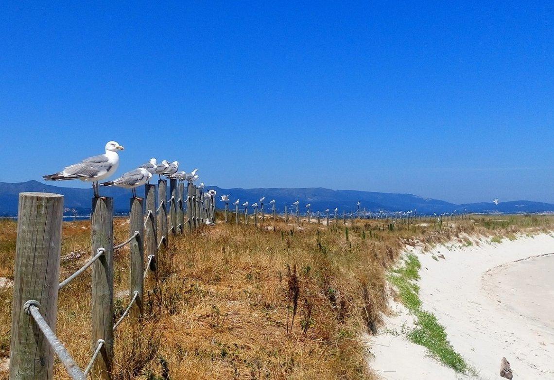 Strand op het eiland La Toxa in Galicië