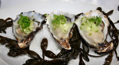 oysters with cucumber in the De Kleine Toren restaurant