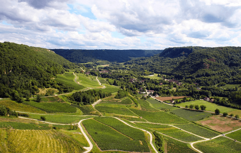 Heerlijke wijnen uit Jura