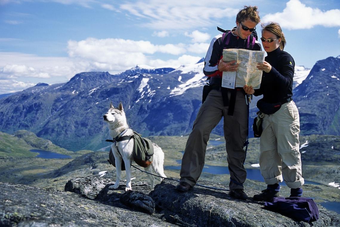 Wandeling door Jotunheimen met hond in Noorwegen