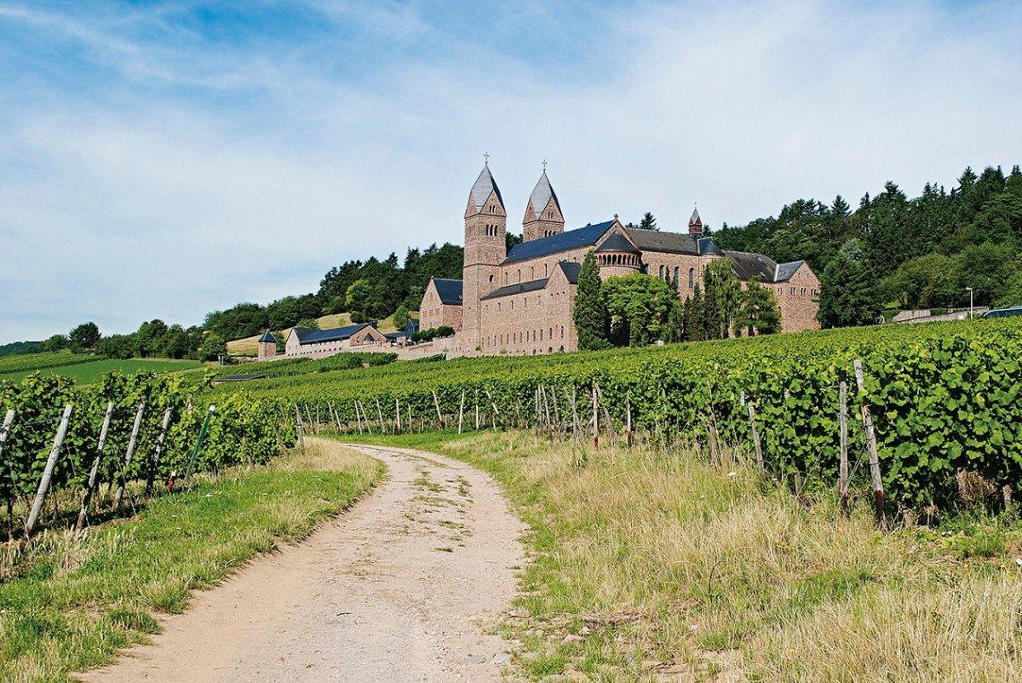 Blick aus den Weinbergen auf die Abtei St. Hildegard bei Rüdesheim