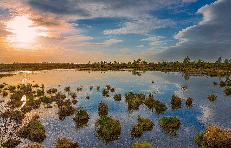 De prachtige natuur van de Belgische Ardennen
