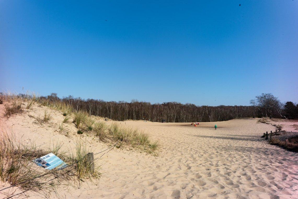 Blick auf die weite Sandfläche der Boberger Dünen bei Hamburg