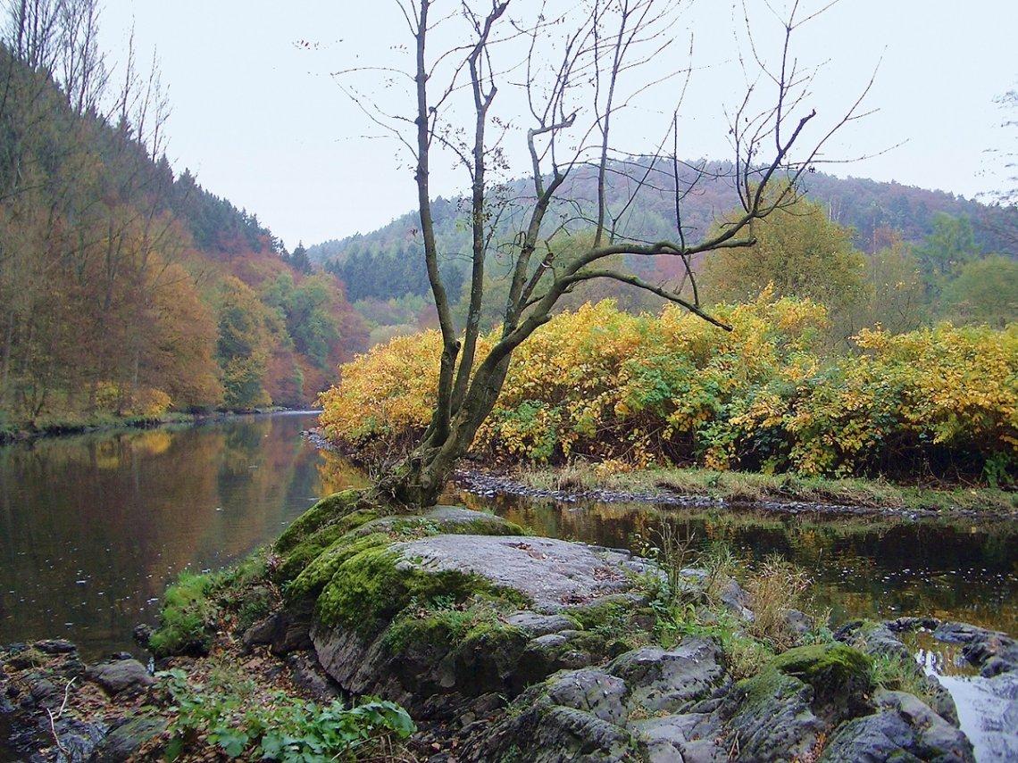 Naturidylle an der Wupper im Herbst