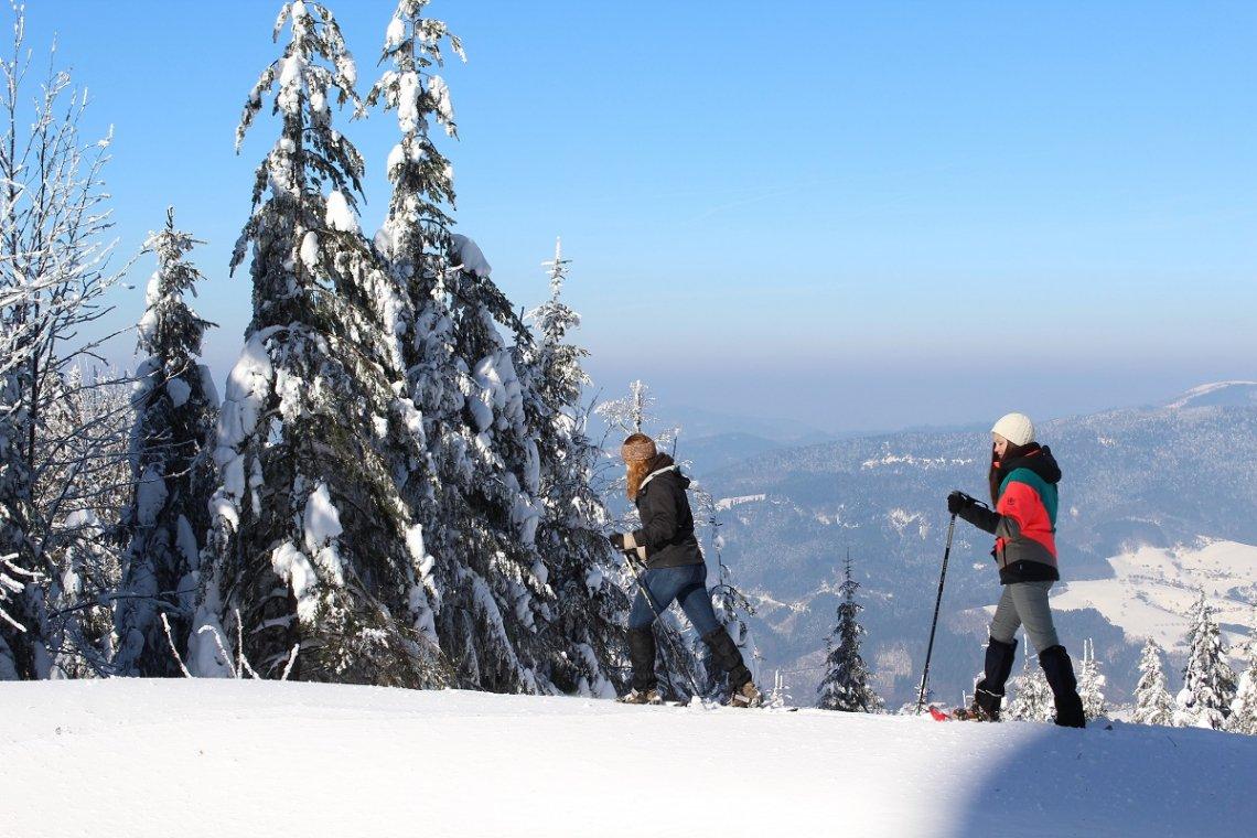Schneeschuhwanderung am Brandenkopf im Schwarzwald