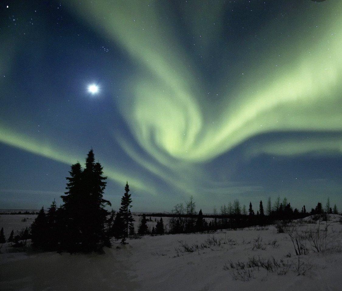 Suche nach Tag: aurora jolie