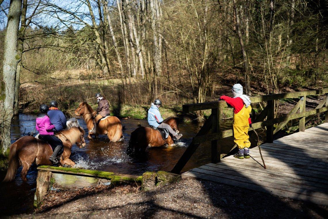 Reiter und Pferde im Fluss im Hellbachtal