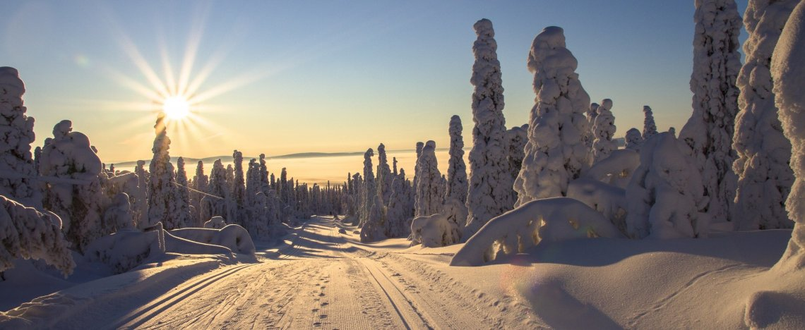 Verschneite Straße im Winter in Lappland, Finnland