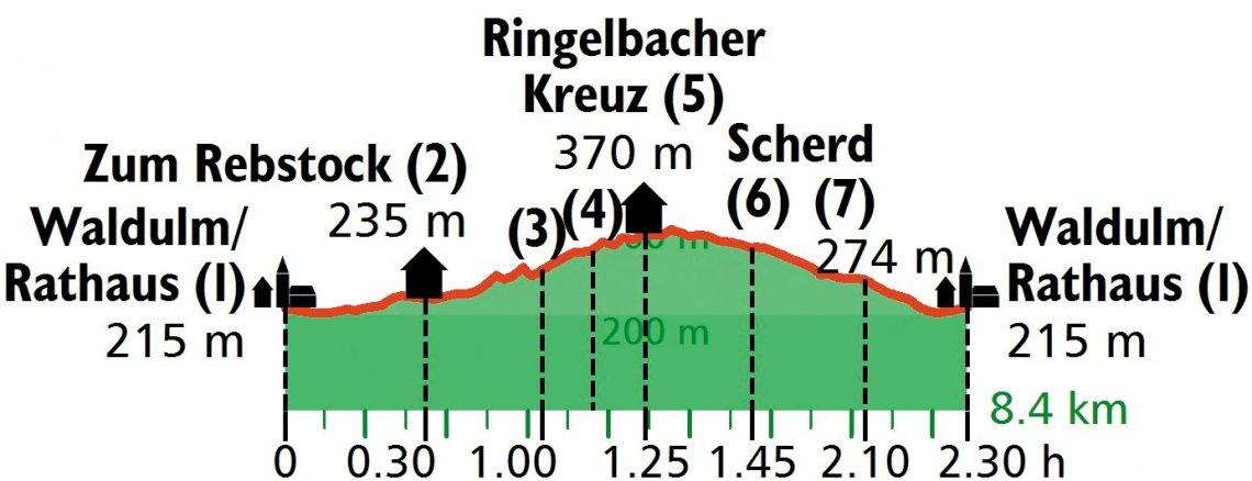 Höhenprofil der Weinwanderung rund um Waldulm in der Ortenau