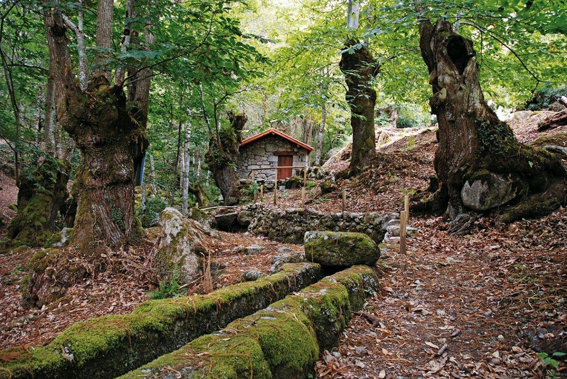 Mühlen von Entrambosríos, Galicien