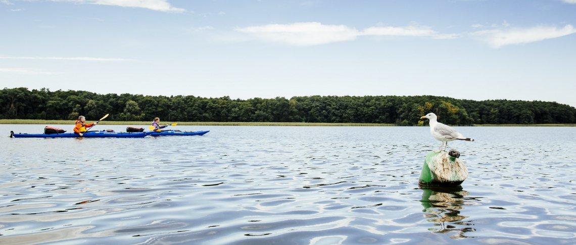 Zwei Kajakfahrer auf der Mecklenburger Seenplatte