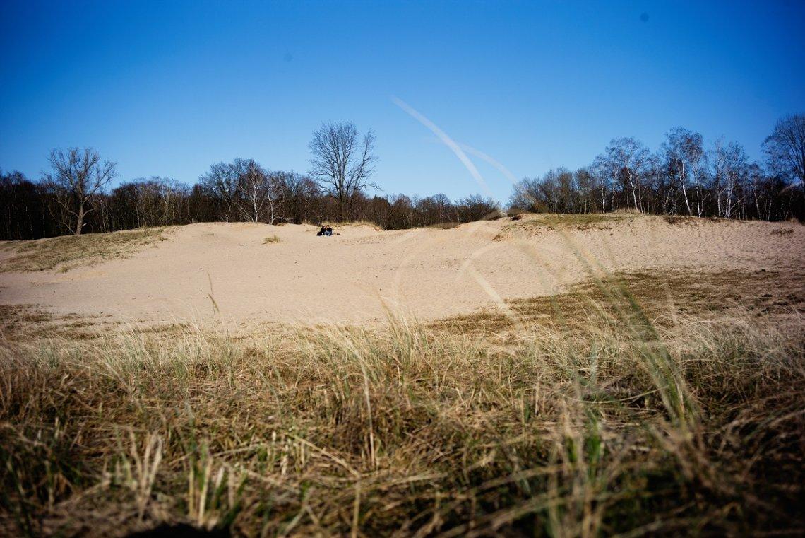 Einsame Sandflächen in den Boberger Dünen bei Sonnenschein