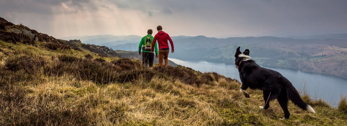 Wandern in Grizedale am Coniston Water, England