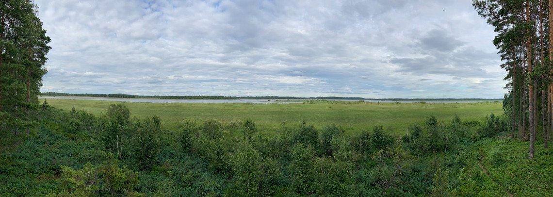 Panoramablick über die Moorlandschaft des Store Mosse