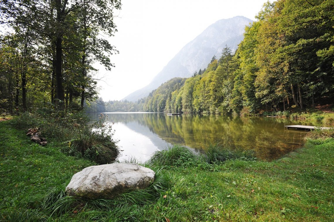 Stimmersee in Austria idyllically framed by forest and mountains