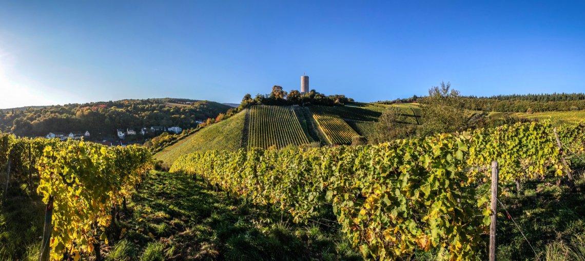 Weinberge in Kiedrich im Rheingau im Herbst