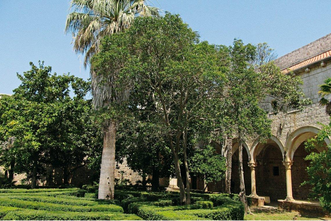 Garten im alten Kloster auf Lokrum