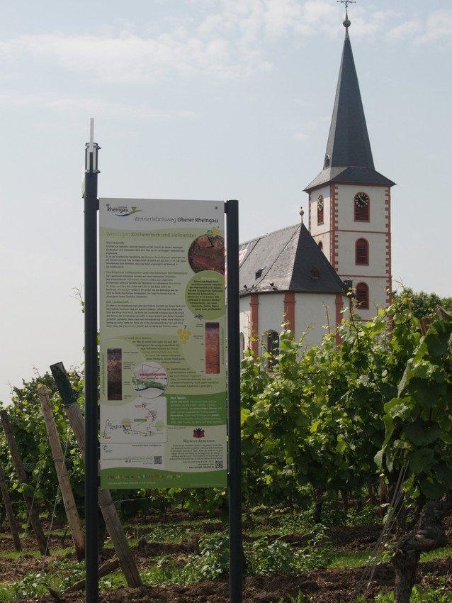 Infotafel Weinerlebnisweg und Kirche im Weinberg bei Hochheim