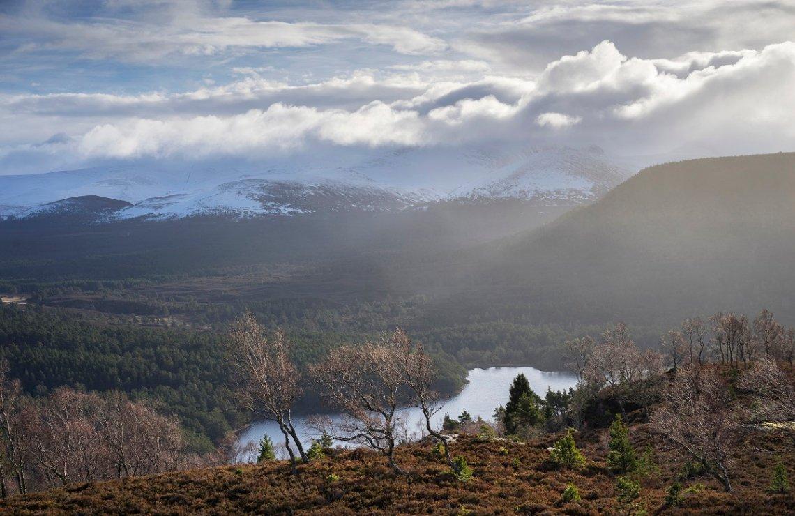 Winter im Nationalpark Cairngorms am Loch Eilein