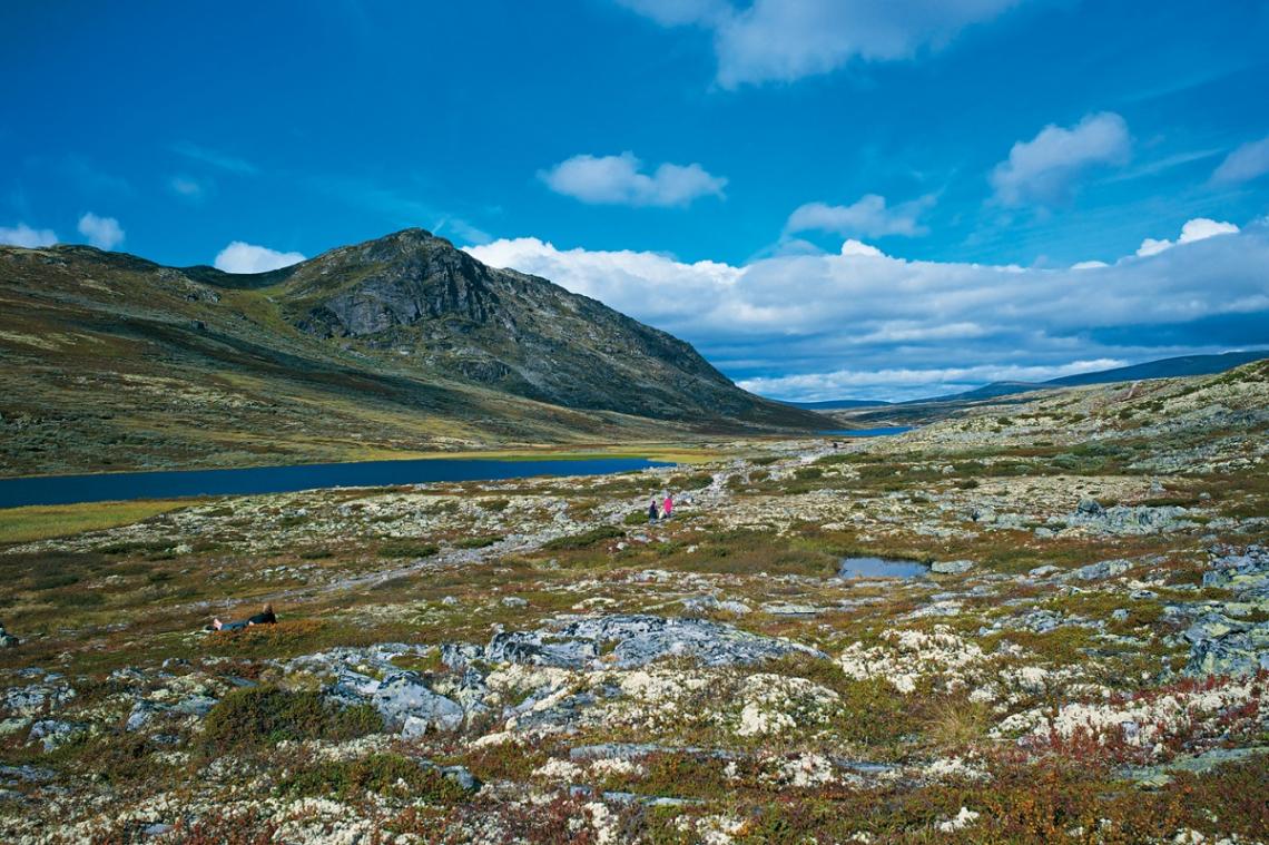 Wanderung Norwegen Rondane Hoeringsvatnet