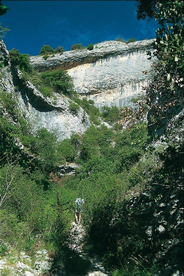 Blick auf die Felswand der Combe de Curnier