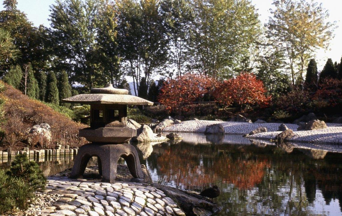 Blick in den Japanischen Garten im Rheinaupark in Bonn