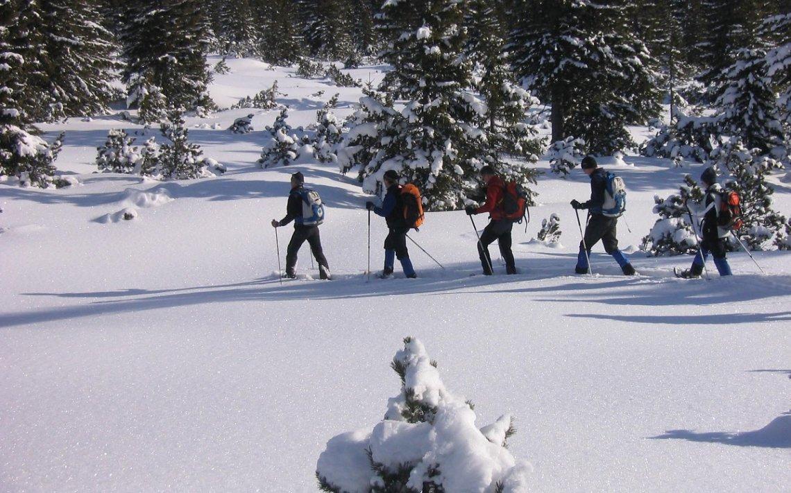 Mit Schneeschuhen durch den Tiefschnee am Belchen